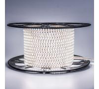 Led лента 220В белая smd2835 120LED/m 12W IP65 , 1м