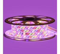 Led лента Multi-Color 220В smd2835 180LED/m 10W IP65 , 1м